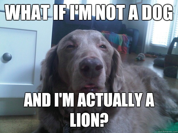 What if I'm not a dog And I'm actually a lion? - What if I'm not a dog And I'm actually a lion?  10 Dog