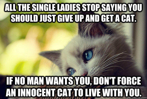 All the single ladies stop saying you should just give up and get a cat. If no man wants you, don't force an innocent cat to live with you. - All the single ladies stop saying you should just give up and get a cat. If no man wants you, don't force an innocent cat to live with you.  First World Cat Problems