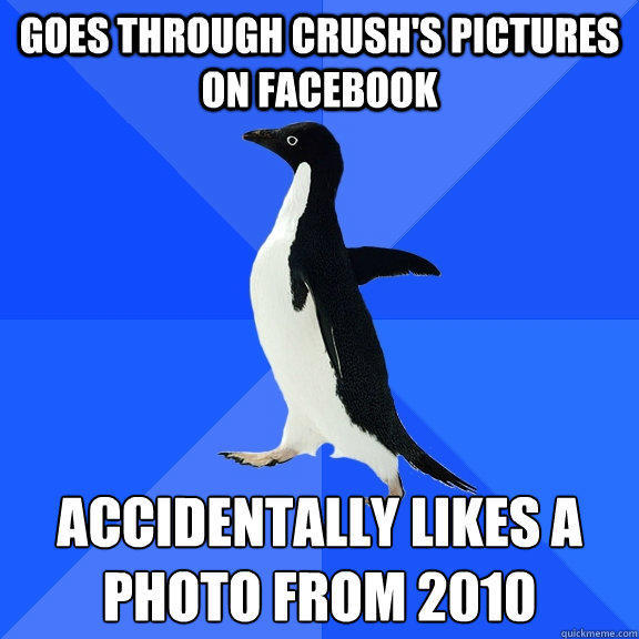 Goes through crush's pictures on facebook accidentally likes a photo from 2010 - Goes through crush's pictures on facebook accidentally likes a photo from 2010  Socially Awkward Penguin