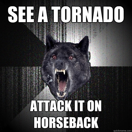 See a tornado ATTACK IT ON HORSEBACK - See a tornado ATTACK IT ON HORSEBACK  Insanity Wolf