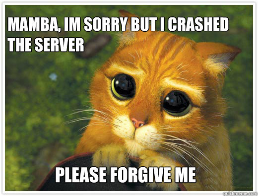 Mamba, im sorry but i crashed the server  please forgive me
