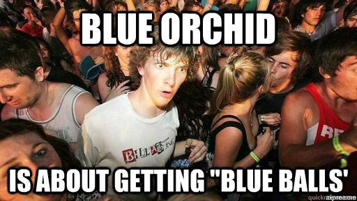 Blue Orchid Is about getting