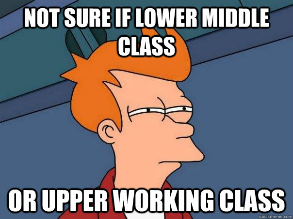 Not sure if lower middle class or upper working class  - Not sure if lower middle class or upper working class   Futurama Fry