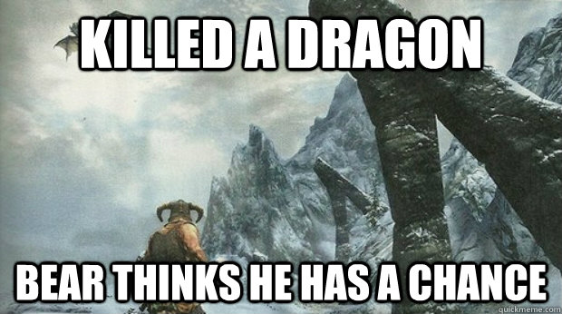 Killed a dragon  Bear thinks he has a chance  Skyrim Logic