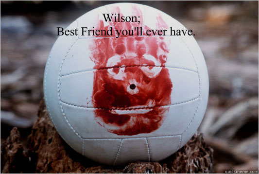 Wilson;    Best Friend you'll ever have. - Wilson;    Best Friend you'll ever have.  castaway