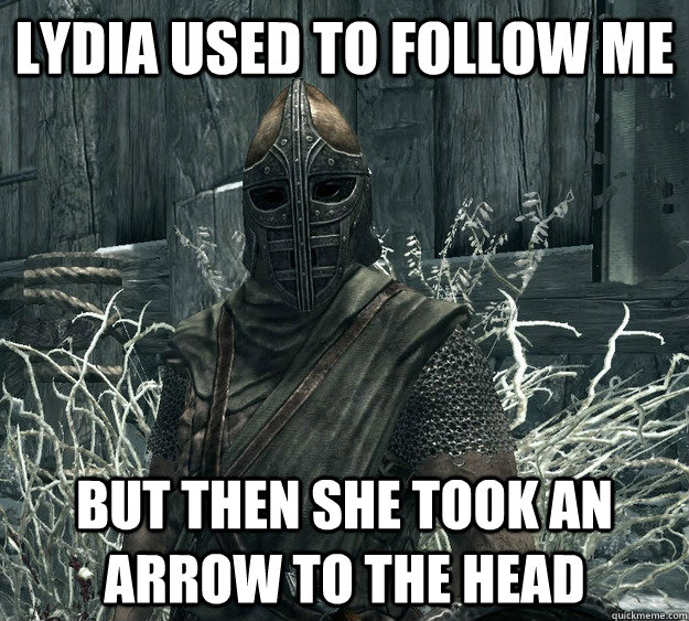 lydia used to follow me but then she took an arrow to the head - lydia used to follow me but then she took an arrow to the head  Annoying Skyrim Guard