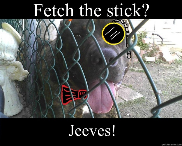 Fetch the stick? Jeeves!