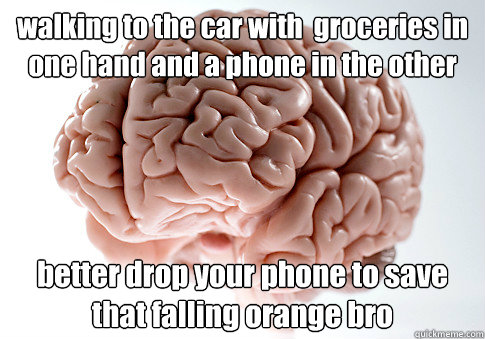 walking to the car with  groceries in one hand and a phone in the other better drop your phone to save that falling orange bro  - walking to the car with  groceries in one hand and a phone in the other better drop your phone to save that falling orange bro   Scumbag Brain