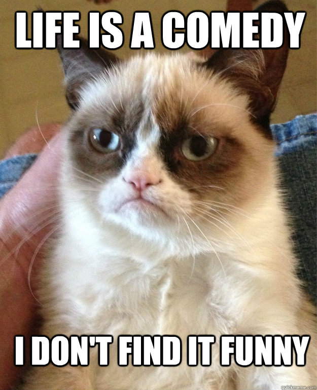 Life is a comedy I don't find it funny - Life is a comedy I don't find it funny  Grumpy Cat