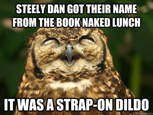 Stelly dan dildo agree, the