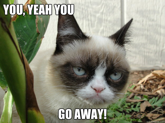 you, yeah you Go away! - grumpy cat2 - quickmeme Go Away Meme