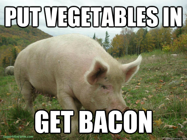 Put Vegetables in Get bacon - Put Vegetables in Get bacon  Misc