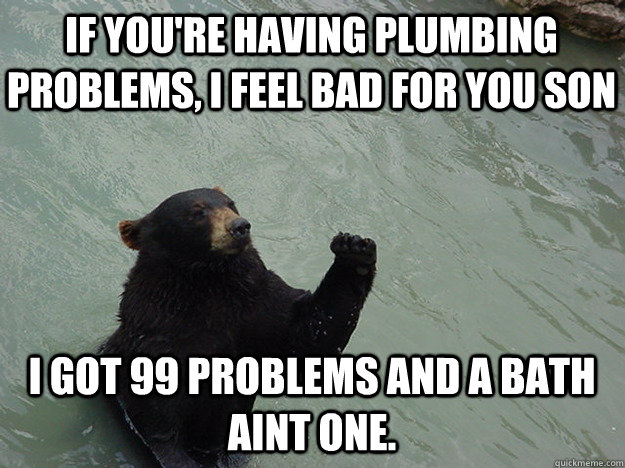 If you're having plumbing problems, I feel bad for you son I got 99 problems and a bath aint one. - If you're having plumbing problems, I feel bad for you son I got 99 problems and a bath aint one.  Vengeful Bear