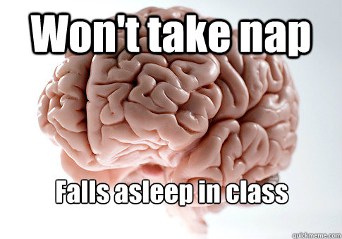 Won't take nap  Falls asleep in class - Won't take nap  Falls asleep in class  Scumbag Brain