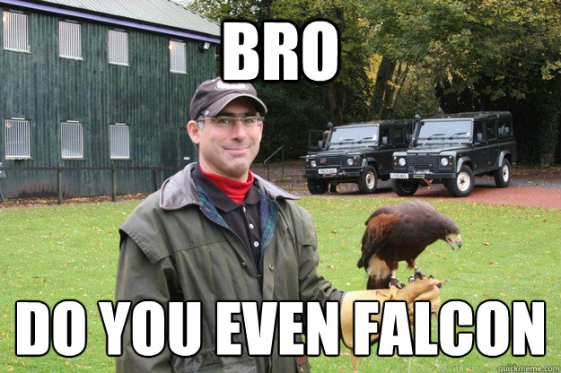 bro do you even falconÉ - bro do you even falconÉ  Smug Falconer