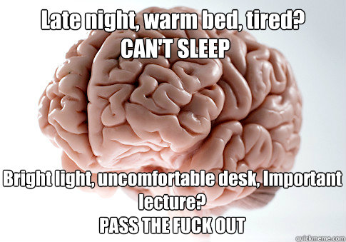 Late night, warm bed, tired?  CAN'T SLEEP Bright light, uncomfortable desk, Important lecture?  PASS THE FUCK OUT  - Late night, warm bed, tired?  CAN'T SLEEP Bright light, uncomfortable desk, Important lecture?  PASS THE FUCK OUT   Scumbag Brain