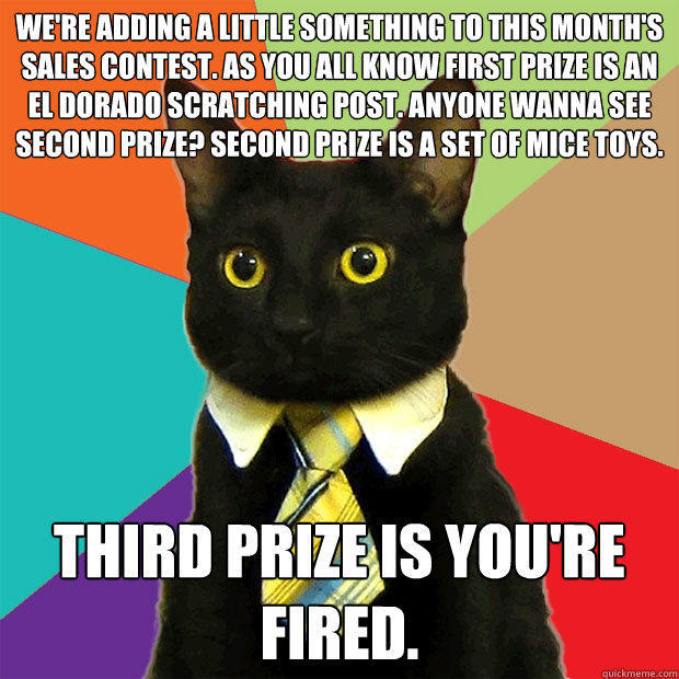 we're adding a little something to this month's sales contest. As you all know first prize is an el dorado scratching post. Anyone wanna see second prize? Second prize is a set of mice toys.  Third prize is you're fired. - we're adding a little something to this month's sales contest. As you all know first prize is an el dorado scratching post. Anyone wanna see second prize? Second prize is a set of mice toys.  Third prize is you're fired.  Business Cat