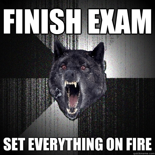 Finish Exam set everything on fire - Finish Exam set everything on fire  Insanity Wolf