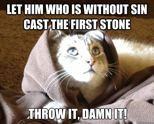 Let him who is without sin cast the first stone THROW IT, DAMN IT!