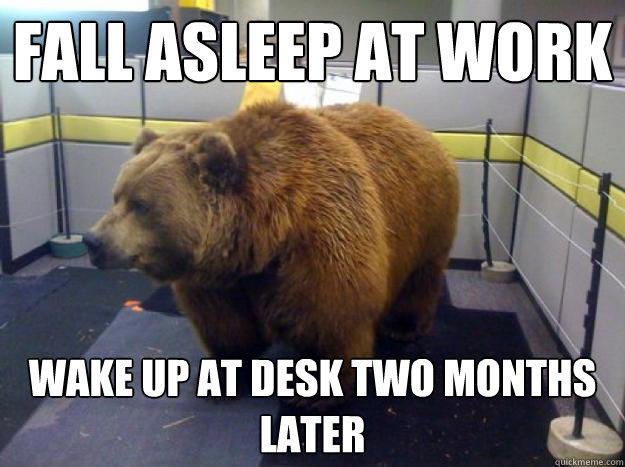 fall asleep at work wake up at desk two months later  Office Grizzly