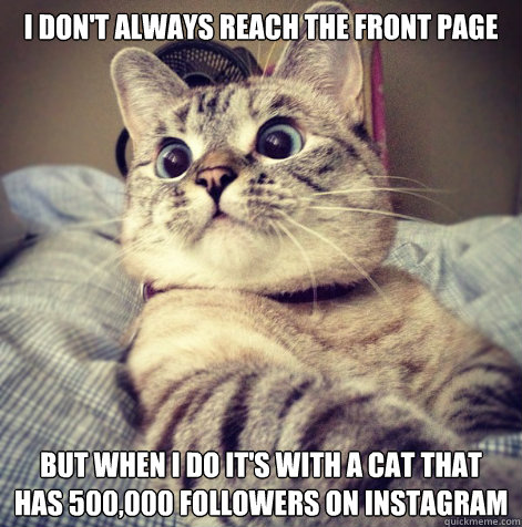 I don't always reach the front page But when I do it's with a cat that has 500,000 followers on instagram - I don't always reach the front page But when I do it's with a cat that has 500,000 followers on instagram  Misc
