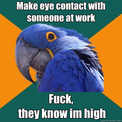 Make eye contact with someone at work Fuck,         they know im high - Make eye contact with someone at work Fuck,         they know im high  Paranoid Parrot