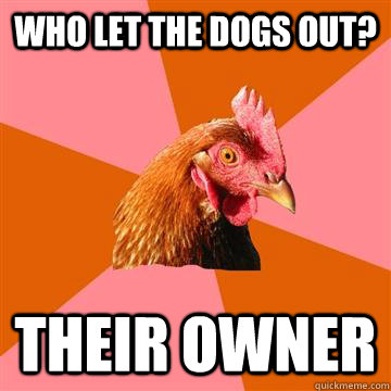 who let the dogs out? their owner - who let the dogs out? their owner  Anti-Joke Chicken