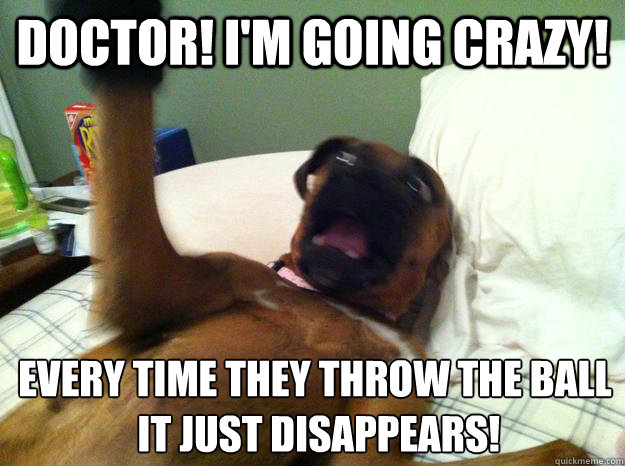 Doctor! I'm going crazy! Every time they throw the ball  it just disappears! - Doctor! I'm going crazy! Every time they throw the ball  it just disappears!  Insane Psychiatric Dog