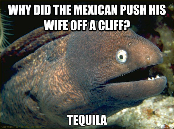 Why did the mexican push his wife off a cliff? Tequila - Why did the mexican push his wife off a cliff? Tequila  Bad Joke Eel