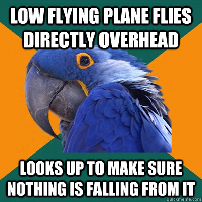 low flying plane flies directly overhead looks up to make sure nothing is falling from it - low flying plane flies directly overhead looks up to make sure nothing is falling from it  Paranoid Parrot