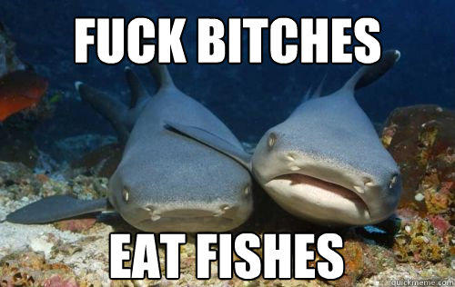 Fuck bitches Eat fishes  Compassionate Shark Friend