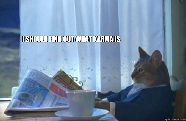 I should find out what karma is - I should find out what karma is  Sophisticated Cat