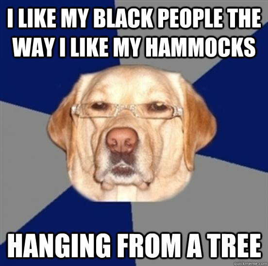 I like my black people the way i like my hammocks hanging from a tree