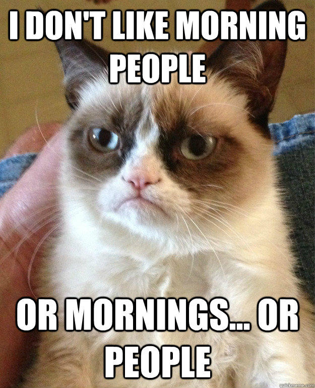 I don't like morning people Or mornings... or People  Grumpy Cat