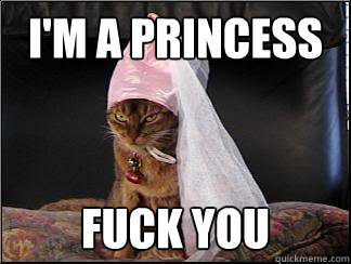 i'm a princess fuck you - i'm a princess fuck you  Im a Princess