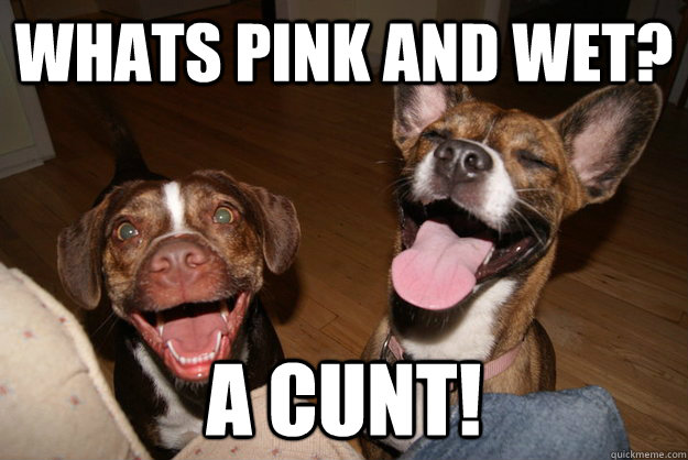 whats pink and wet? a cunt!  Clean Joke Puppies