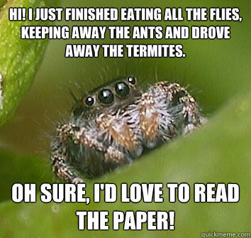Hi! I just finished eating all the flies, keeping away the ants and drove away the termites. Oh sure, I'd love to read the paper! - Hi! I just finished eating all the flies, keeping away the ants and drove away the termites. Oh sure, I'd love to read the paper!  Misunderstood Spider