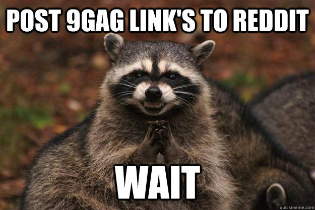 post 9gag link's to reddit  wait - post 9gag link's to reddit  wait  Evil Plotting Raccoon