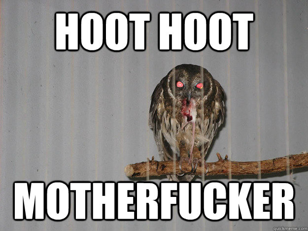 HOOT HOOT MOTHERFUCKER - HOOT HOOT MOTHERFUCKER  Bloodthirsty Owl