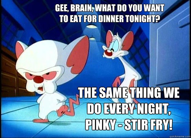 Gee, Brain, what do you want to eat for dinner tonight? The same thing we do every night, Pinky - STIR FRY! - Gee, Brain, what do you want to eat for dinner tonight? The same thing we do every night, Pinky - STIR FRY!  Pinky and the Brain