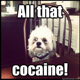 All that cocaine!