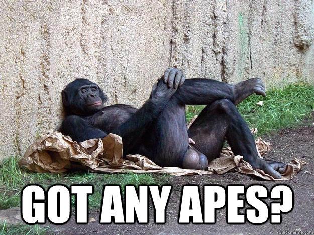Got any apes?