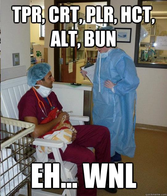 tpr, crt, plr, hct, alt, bun eh... wnl  Overworked Veterinary Student