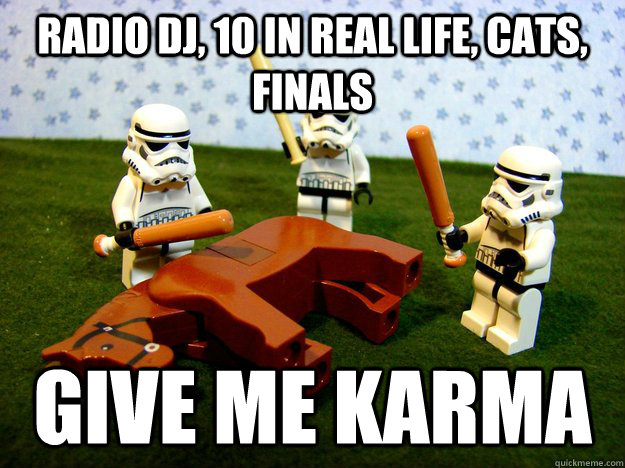 radio dj, 10 in real life, cats, finals give me karma