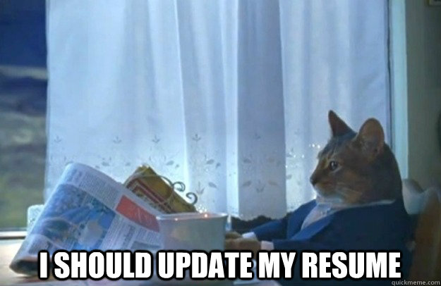 I Should Update My Resume Sophisticated Cat Quickmeme