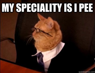My Speciality is I Pee  - My Speciality is I Pee   Lawyer Cat