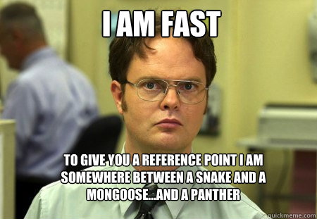 I am fast To give you a reference point I am somewhere between a snake and a mongoose…and a panther - I am fast To give you a reference point I am somewhere between a snake and a mongoose…and a panther  Schrute