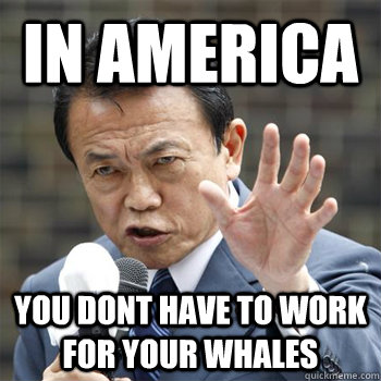 In america you dont have to work for your whales - In america you dont have to work for your whales  Misc