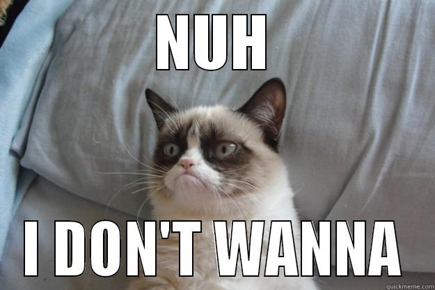 17a265f14bb45996e175aedf789cd9557d88572a4f0b0e12ddccd86f4fccc7b5 nuh i don't wanna grumpy cat quickmeme