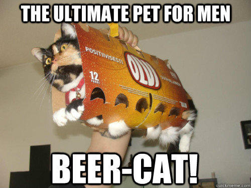 The ultimate pet for men  Beer-Cat!   The ultimate pet for men